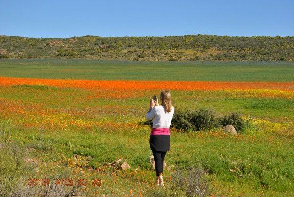один мой день в цветочном раю, город Спринбок, ЮАР