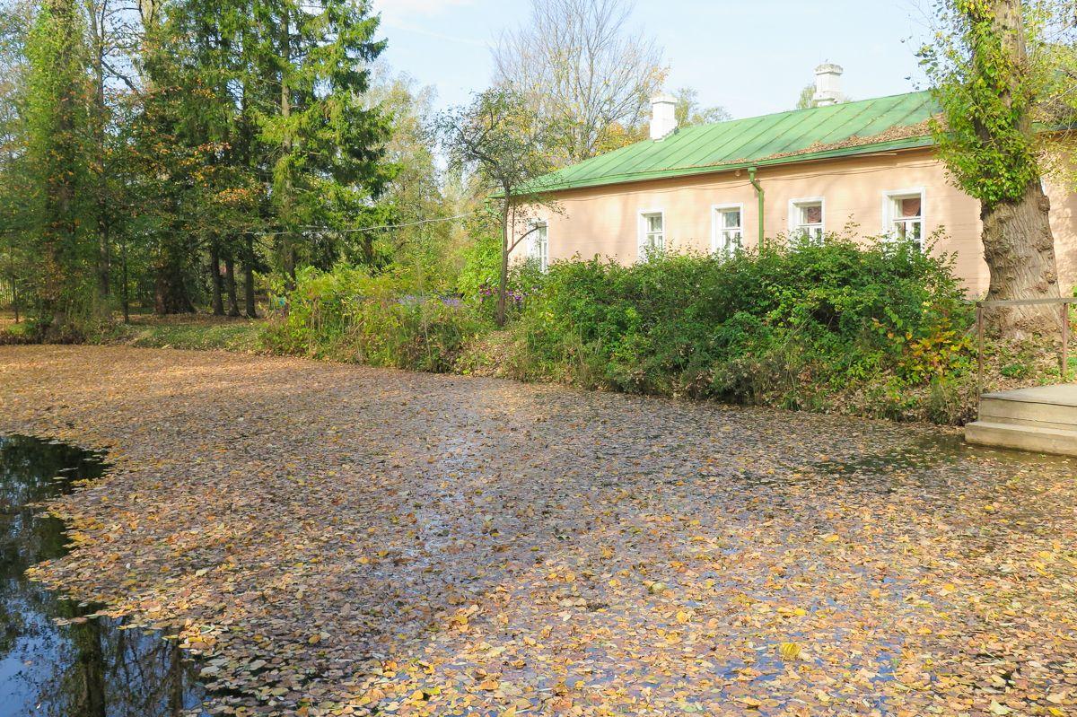 один день бабьего лета в Чехове, фото 28