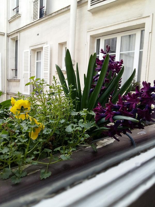 один мой день прожитый в городе Париж, фото 6