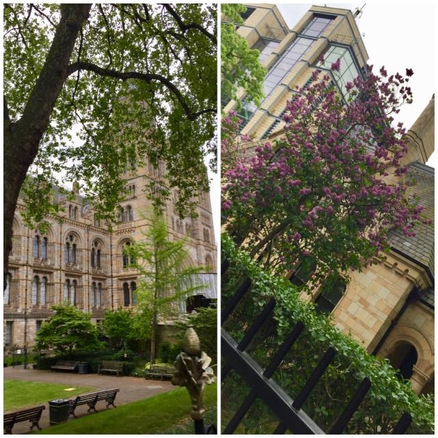 один майский день преподавателя английского языка в Лондоне, фото 24