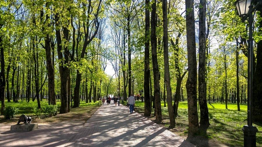 один олений день проведенный в городе Смоленск, фото 45