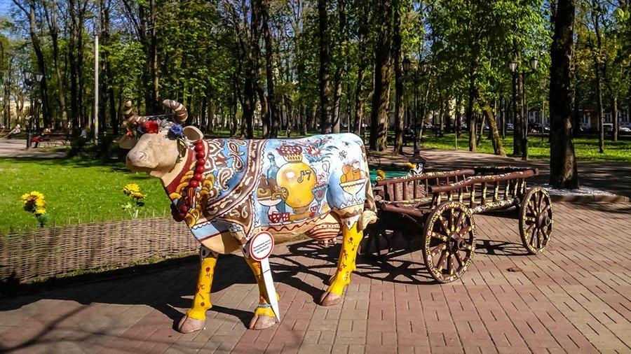 один олений день проведенный в городе Смоленск, фото 46