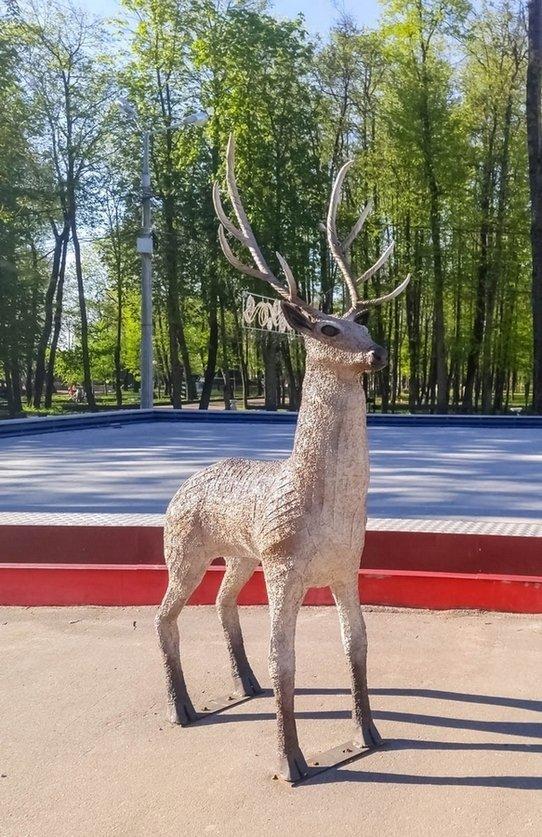 один олений день проведенный в городе Смоленск, фото 54
