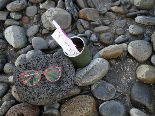 один день переводчика в местности Хорнстрандир, Исландия
