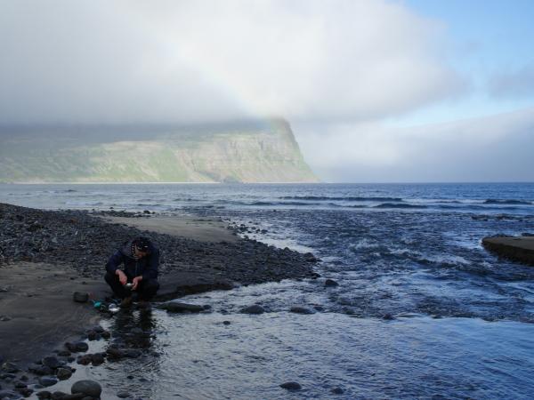 один день переводчика в местности Хорнстрандир, Исландия, фото 13