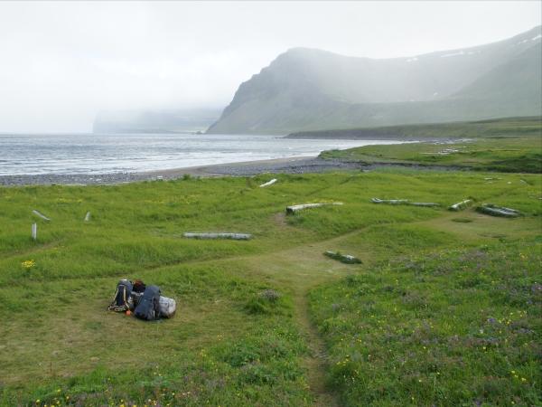 один день переводчика в местности Хорнстрандир, Исландия, фото 21