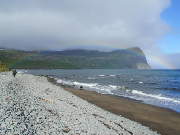 один день переводчика в местности Хорнстрандир, Исландия, фото 24