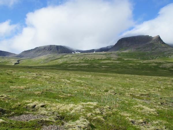 один день переводчика в местности Хорнстрандир, Исландия, фото 27