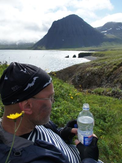 один день переводчика в местности Хорнстрандир, Исландия, фото 31