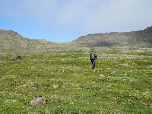 один день переводчика в местности Хорнстрандир, Исландия, фото 33