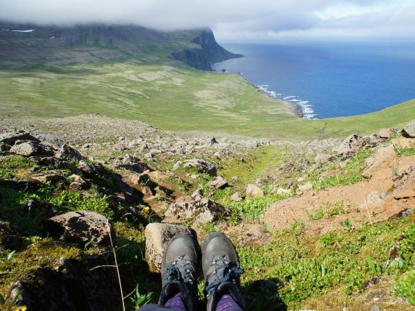 один день переводчика в местности Хорнстрандир, Исландия, фото 36