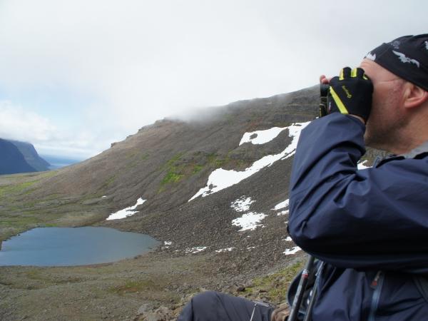 один день переводчика в местности Хорнстрандир, Исландия, фото 44