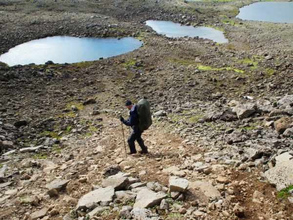один день переводчика в местности Хорнстрандир, Исландия, фото 45