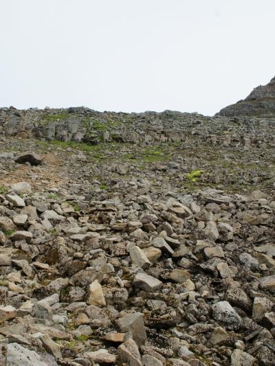 один день переводчика в местности Хорнстрандир, Исландия, фото 46