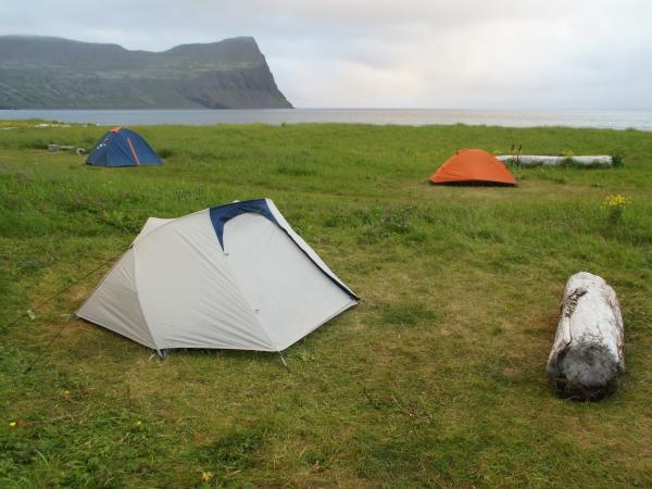 один день переводчика в местности Хорнстрандир, Исландия, фото 5