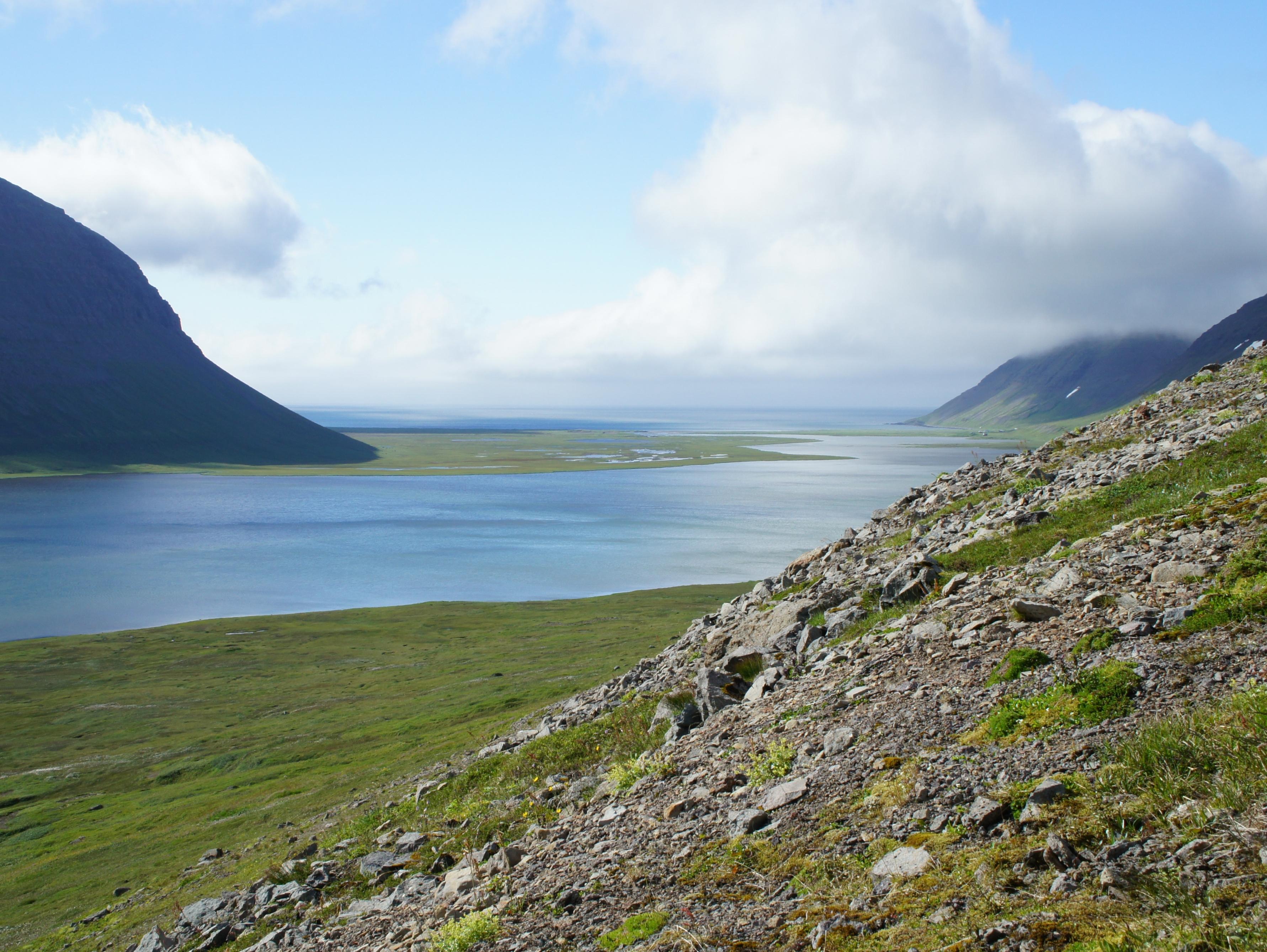 один день переводчика в местности Хорнстрандир, Исландия, фото 50