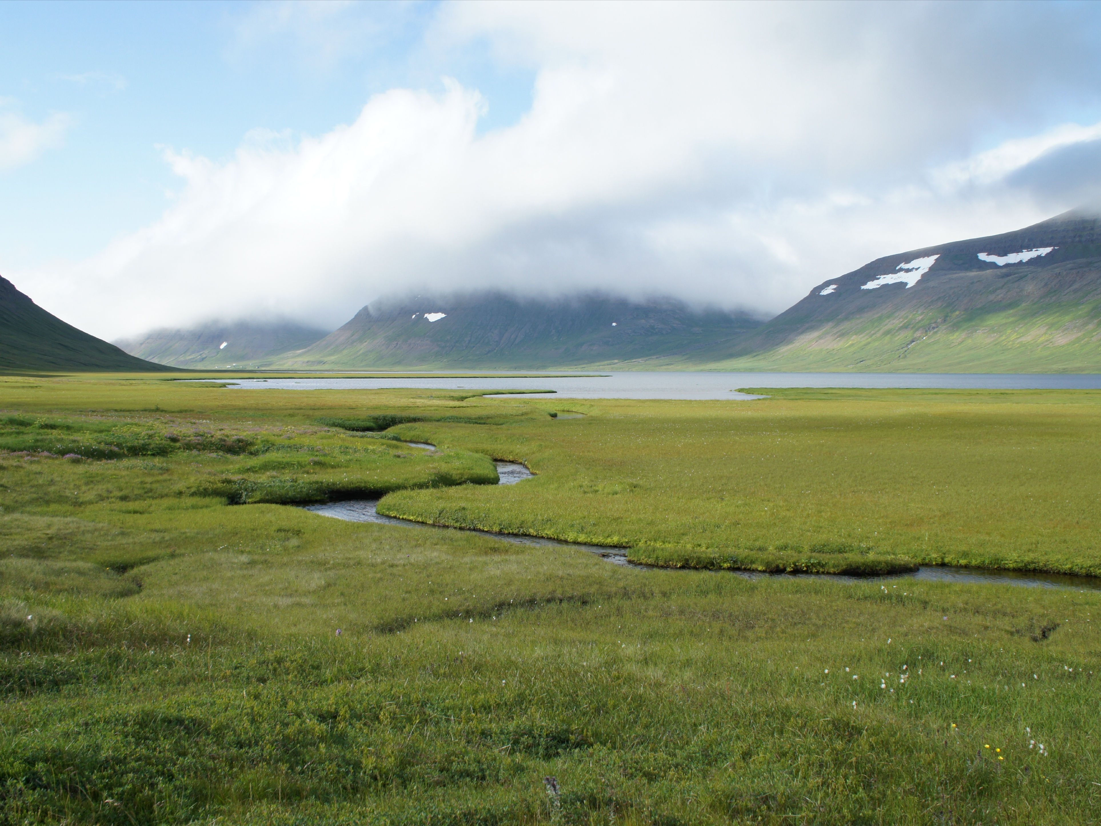 один день переводчика в местности Хорнстрандир, Исландия, фото 53