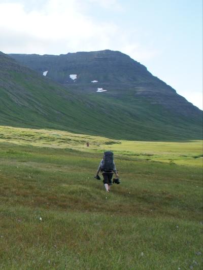 один день переводчика в местности Хорнстрандир, Исландия, фото 54