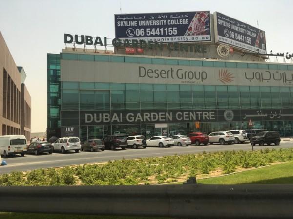 один мой выходной день в Дубае, фото 23