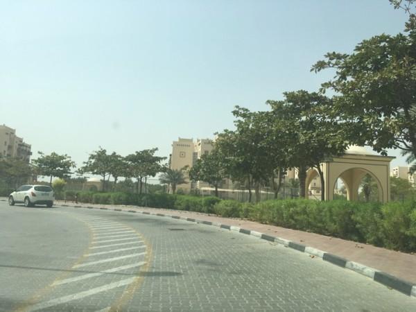 один мой выходной день в Дубае, фото 33