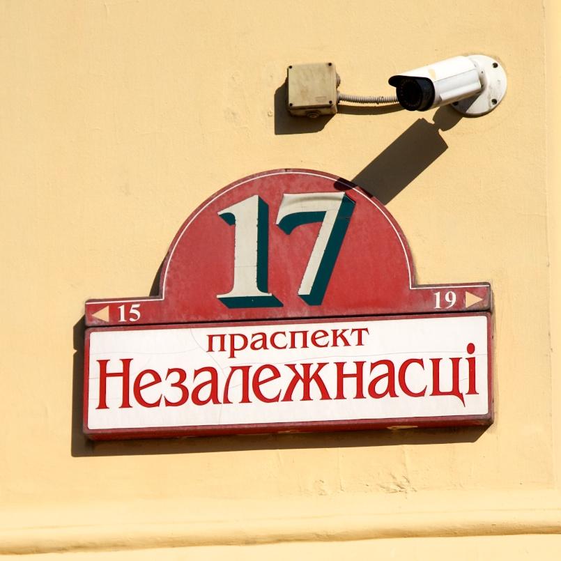 один день лягушки-путешественницы проведенный в городе Минск, фото 10