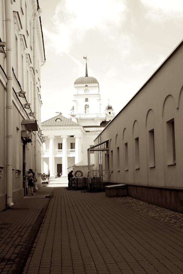 один день лягушки-путешественницы проведенный в городе Минск, фото 20