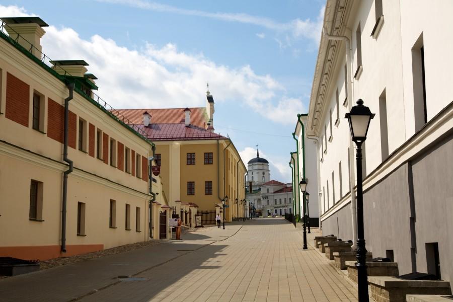 один день лягушки-путешественницы проведенный в городе Минск, фото 23