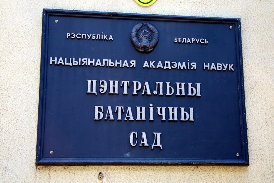 один день лягушки-путешественницы проведенный в городе Минск, фото 39