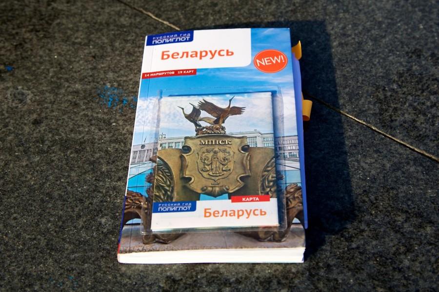 один день лягушки-путешественницы проведенный в городе Минск, фото 7