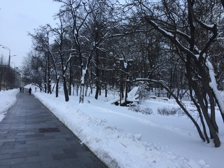 один мой февральский день в городе Москва, фото 23