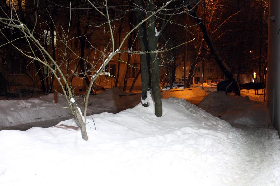 один мой февральский день в городе Москва, фото 45