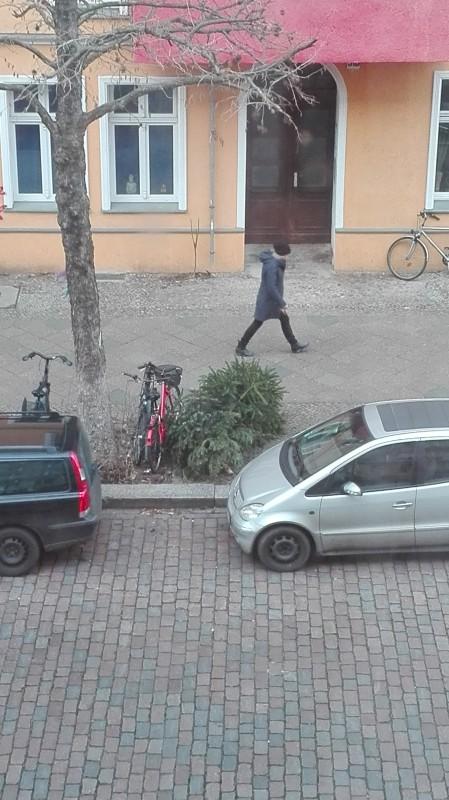 одно воскресенье типичной жительницы Берлина, фото 18