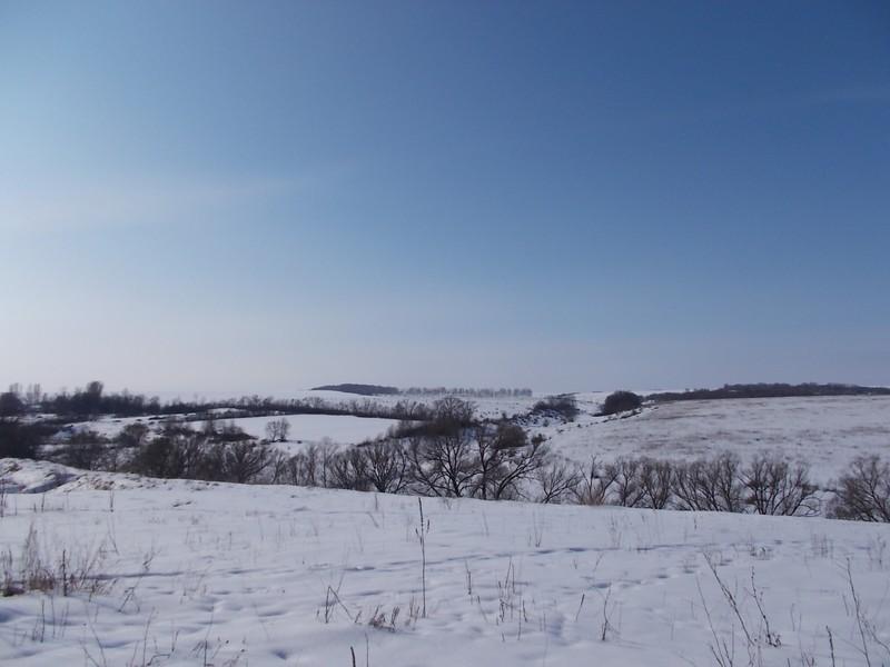 один мой морозный день в деревне Липецкой области, фото 23