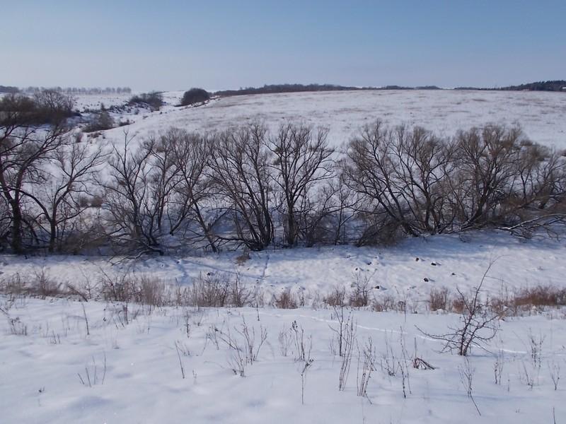 один мой морозный день в деревне Липецкой области, фото 24