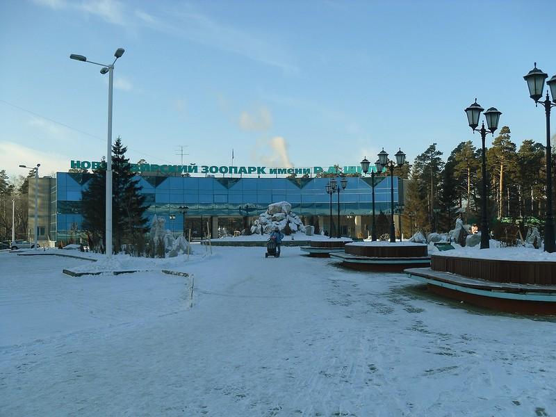один мой будний день в Новосибирске