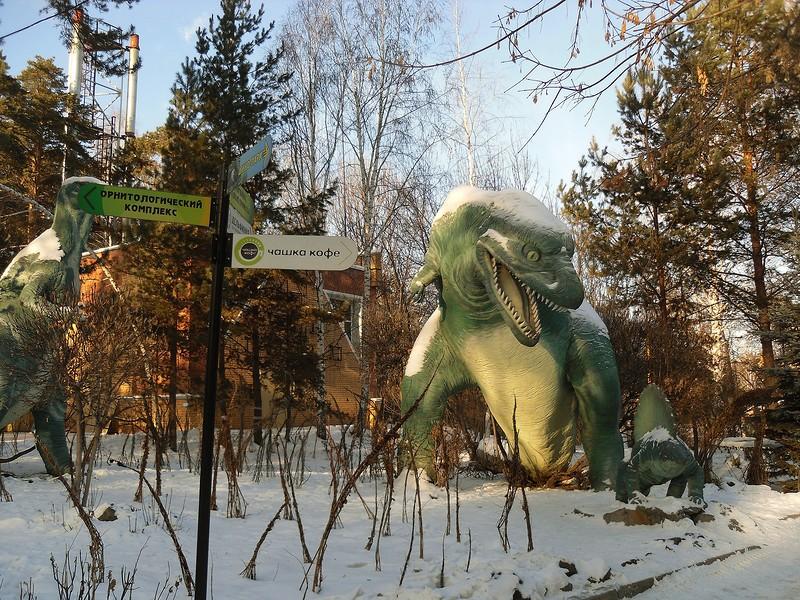 один мой будний день в Новосибирске, фото 14