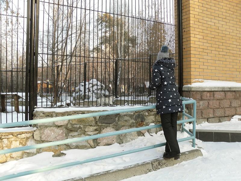 один мой будний день в Новосибирске, фото 18