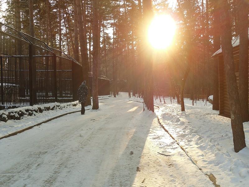 один мой будний день в Новосибирске, фото 29