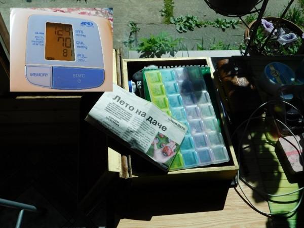 один мой весенний день проведенный на даче, фото 12