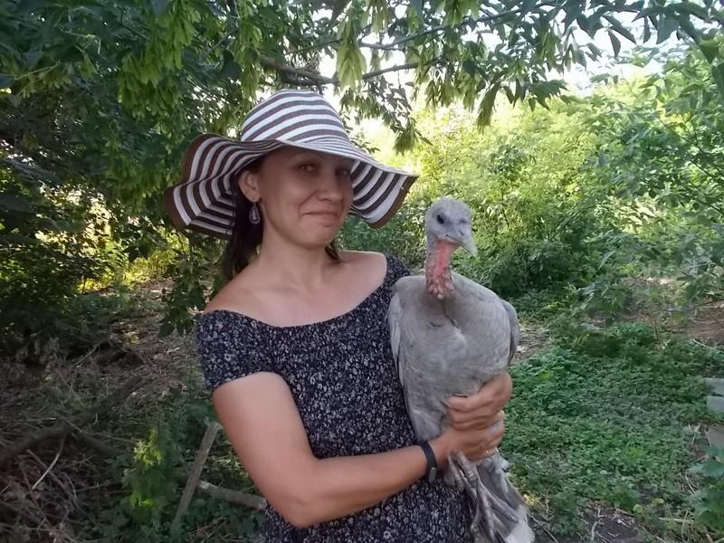 один мой день в деревне Липецкой области