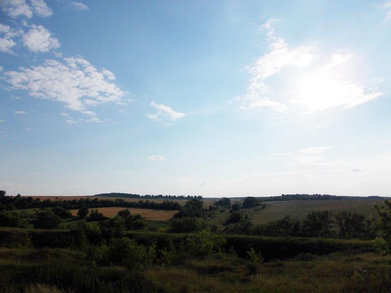 один мой день в деревне Липецкой области, фото 37