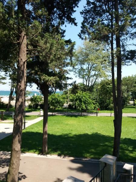 один мой будний летний день в Болгарии, фото 9