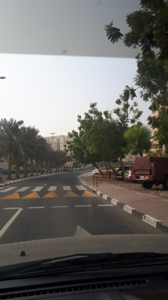 один мой рядовой день в Дубае, фото 11