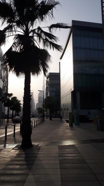 один мой рядовой день в Дубае, фото 34